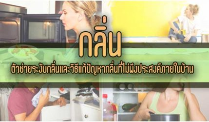 กลิ่น ตัวช่วยระงับกลิ่นและวิธีแก้ปัญหากลิ่นที่ไม่พึงประสงค์ภายในบ้าน