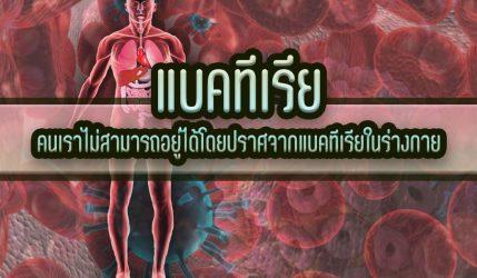 แบคทีเรีย คนเราไม่สามารถอยู่ได้โดยปราศจากแบคทีเรียในร่างกาย